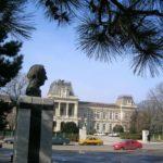 Sabotaj: Prefectura Călărași a fost prădată de hoți!