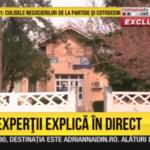 Alegeri vesele: Tanti Tița crede că Traian Băsescu trebuie să se mute la Nana / Video