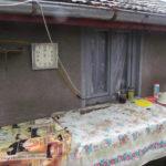 România reală, dincolo de birouri: Spiderman a luat ciuperci